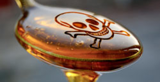 When a Calorie is More than a Calorie: Fructose The Silent Killer