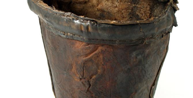 Re-thinking inflammatory events: The inflammatory bucket