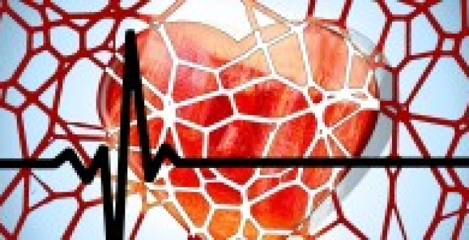 The Sticky Truth on Cholesterol: More than your Average Lipid Test