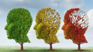 alzheimers-dementia-cure-yale-amyloid-treatment-9